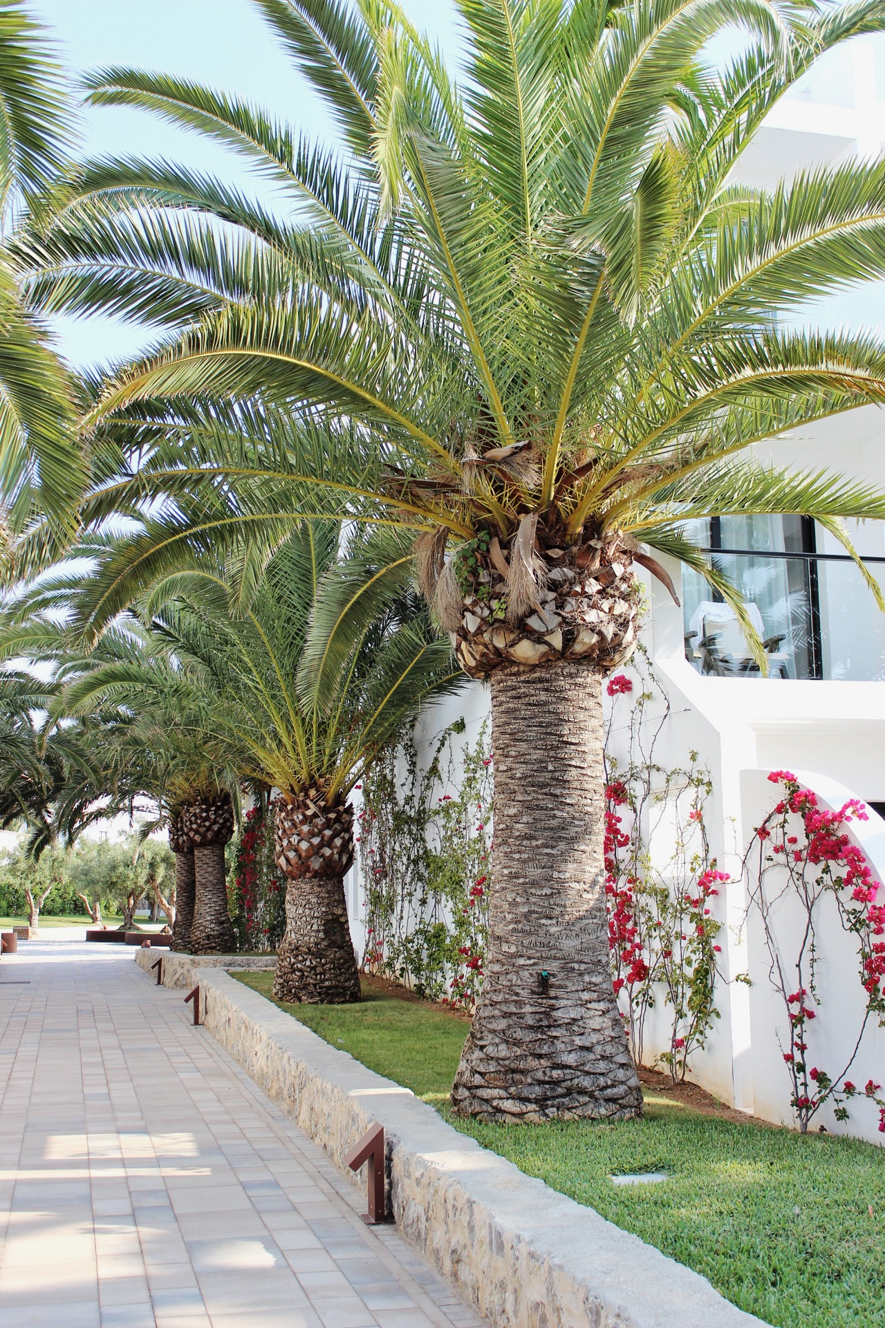 Grand Palladium White Island Playa De Bossa Ibiza