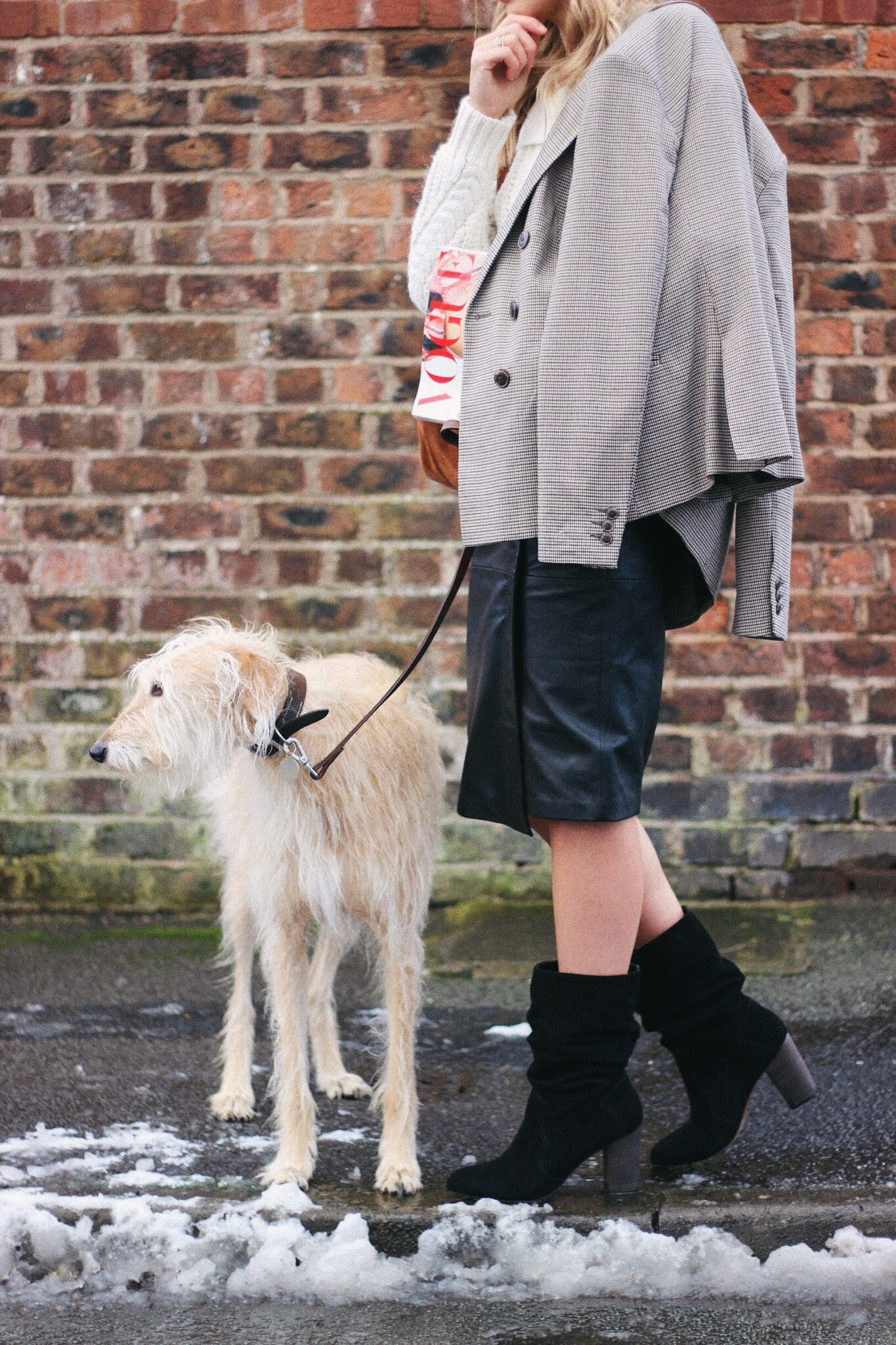 blonde haired lurcher Brody from Lurchhoundloves style blog