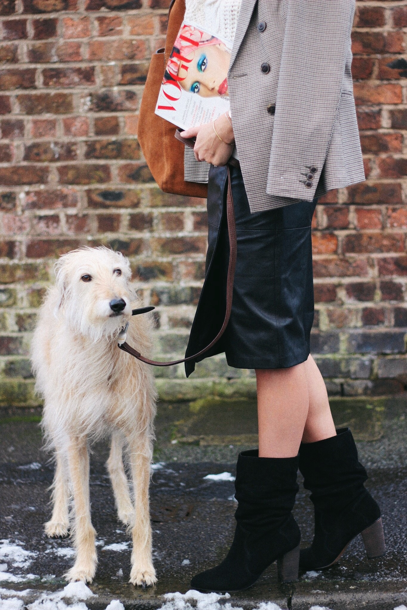 fashion blogger and their pet dog lurchhoundloves